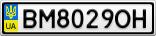Номерной знак - BM8029OH