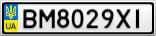 Номерной знак - BM8029XI