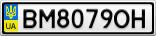 Номерной знак - BM8079OH
