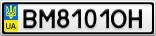 Номерной знак - BM8101OH