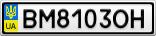 Номерной знак - BM8103OH