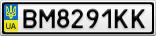 Номерной знак - BM8291KK
