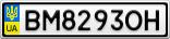 Номерной знак - BM8293OH