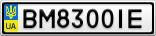 Номерной знак - BM8300IE