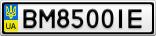 Номерной знак - BM8500IE