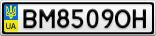 Номерной знак - BM8509OH