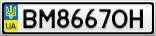 Номерной знак - BM8667OH