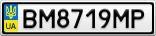 Номерной знак - BM8719MP