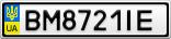 Номерной знак - BM8721IE