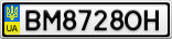Номерной знак - BM8728OH