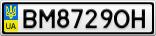 Номерной знак - BM8729OH
