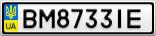 Номерной знак - BM8733IE