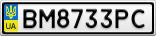 Номерной знак - BM8733PC