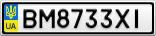 Номерной знак - BM8733XI