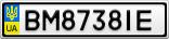 Номерной знак - BM8738IE