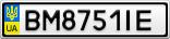 Номерной знак - BM8751IE