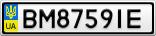 Номерной знак - BM8759IE