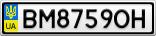 Номерной знак - BM8759OH