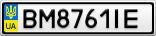Номерной знак - BM8761IE