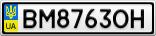 Номерной знак - BM8763OH