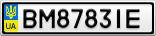 Номерной знак - BM8783IE