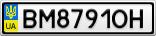 Номерной знак - BM8791OH
