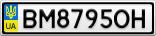 Номерной знак - BM8795OH