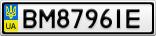 Номерной знак - BM8796IE