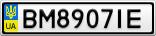 Номерной знак - BM8907IE