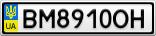 Номерной знак - BM8910OH