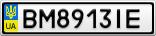 Номерной знак - BM8913IE