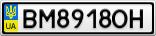 Номерной знак - BM8918OH