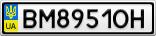 Номерной знак - BM8951OH