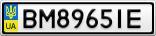 Номерной знак - BM8965IE