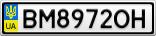 Номерной знак - BM8972OH