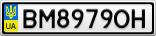Номерной знак - BM8979OH