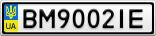 Номерной знак - BM9002IE