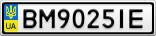 Номерной знак - BM9025IE
