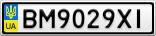 Номерной знак - BM9029XI