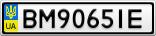 Номерной знак - BM9065IE