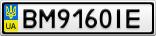 Номерной знак - BM9160IE