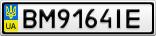 Номерной знак - BM9164IE