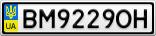 Номерной знак - BM9229OH