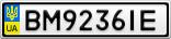 Номерной знак - BM9236IE