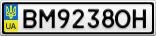 Номерной знак - BM9238OH