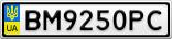 Номерной знак - BM9250PC