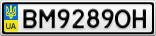 Номерной знак - BM9289OH