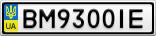Номерной знак - BM9300IE