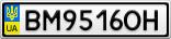 Номерной знак - BM9516OH