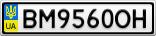 Номерной знак - BM9560OH